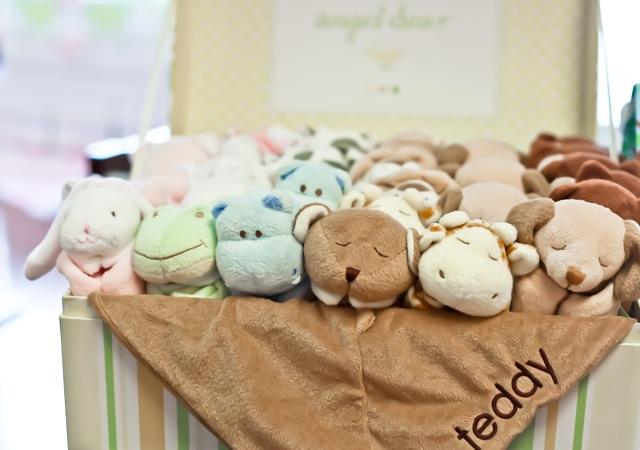 Teddy Blankets